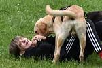 Setkání psích sourozenců z děčínského útulku a jejich majitelů.