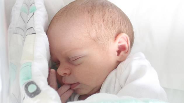 Rodičům Nicole Cowanová a Lukáši Šeligovi ze Šluknova se v pondělí 8. července v 8:39 hodin narodil syn Daniel Šeliga. Vážil 3,04 kg.