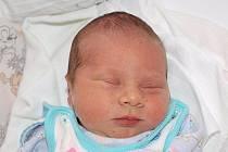 Lence Křížové z Jiřetína pod Jedlovou se 27.prosince v 17.45 v rumburské porodnici narodil syn Michal Kříž. Měřil 48 cm a vážil 2,88 kg.