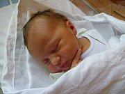 Janě Langerové z Varnsdorfu se 19. června v 01:10 v rumburské porodnici narodila dcera Barborka Langerová. Měřila 50 cm a vážila 3,41 kg.