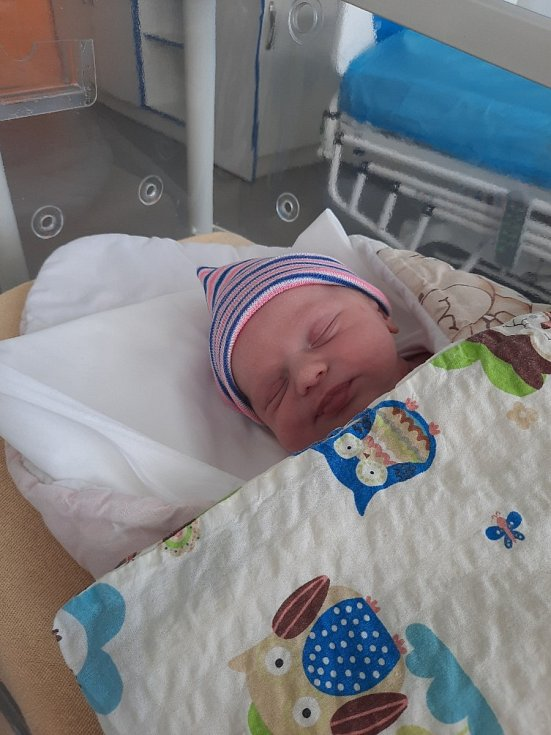 Dominika Wagner se narodil Kristýně Janišové a Petru Wagnerovi 19. února v 6:20 hodin. Měřila 47 cm, vážila 3,22 kg.
