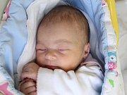 Rodičům Petře a Josefovi Stiborovým z Horního Podluží se ve středu 19. prosince v 10:26 hodin narodila dcera Anna Stiborová. Měřila 50 cm a vážila 3,35 kg.
