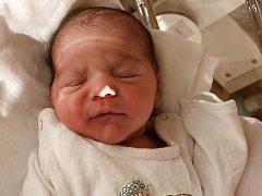 Heleně Dankové z Varnsdorfu se 5. prosince ve 22.40 v rumburské porodnici narodila dcera Liliana Červeňáková. Měřila 53 cm a vážila 3,5 kg.