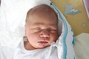 Rodičům Michaele Lorencové a Michalu Hnízdovi z Lipové u Šluknova se v úterý 19. února v 17:26 hodin narodil syn Vojtěch Hnízdo. Měřil 50 cm a vážil 3,60 kg.