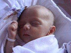Elizabet Katarína Rína Gendráčová se narodila Zlatici Gendráčové z Děčína 23. června v 8.25 v děčínské porodnici. Měřila 45 cm a vážila 1,85 kg.