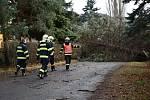 Orkán Sabine řádila také v Děčíně, kde polámala několik stromů.