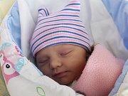 Tereza Daitlová se narodila Lence Duchoslavové a Janu Daitlovi z Rumburku 5. prosince v 0.07. Měřila 50 cm a vážila 3,08 kg.