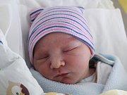 Adam Schmutzer se narodil Lence Ježkové z Rumburku 22. února v 18.57. Vážil 3,57 kg.