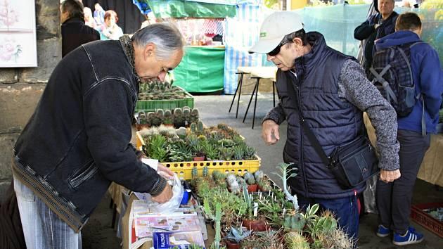 V areálu střední zemědělské školy v Libverdě je až do neděle zahradnická a zemědělská výstava.