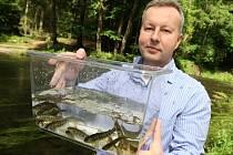 Vypouštění lososů do řeky Kamenice 2014.
