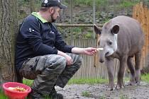 Zoo zahájila 67. návštěvnickou sezónu.