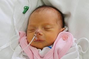 Mamince Anně Repčákové z Děčína se 28. srpna narodila dcera Daniela Repčáková. Měřila 42 cm, vážila 2,05 kg