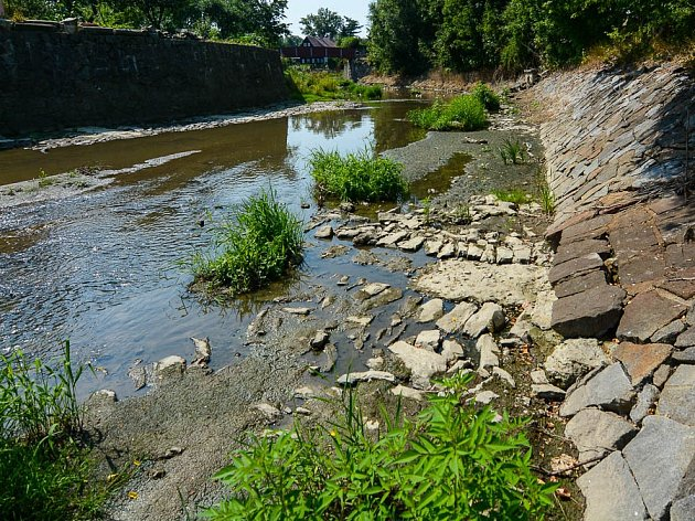 Sucho trápí i řeku Mandavu ve Varnsdorfu.