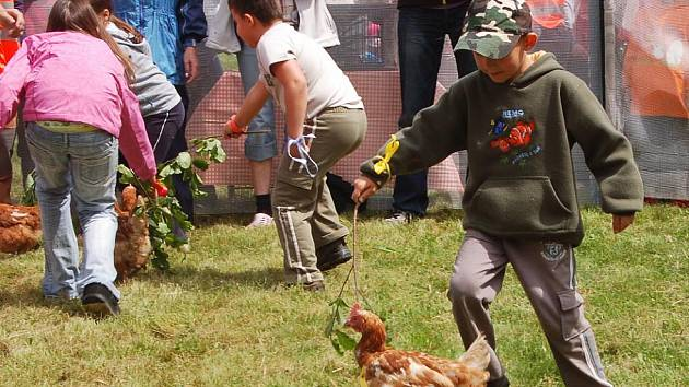 – Šestý ročník Janského vajíčka si užily stovky lidí, kteří v sobotu zamířily do janského adrenalin parku.
