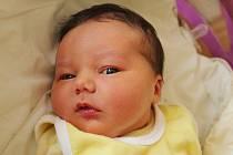 Andělka Pavelka se narodila Kláře a Jiřímu Pavelkovým z Krásné Lípy 8. července. Měřila 51 cm a vážila 3,95 kg.