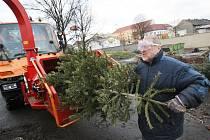 Vánoční stromky budou od kontejnerových stání odvážet technické služby k likvidaci štěpkováním.
