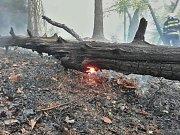 U Mezní louky hoří les