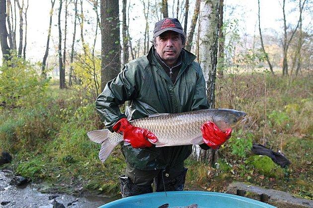 Tradiční výlov za sebou mají rybáři v Horním Podluží, kteří uspořádali výlov rybníku Světlík.