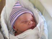 David Smith se narodil Anně Zibnerové a Davidu Smithovi z Rumburku 8. ledna v 19.35. Měřil 48 cm a vážil 3,03 kg.