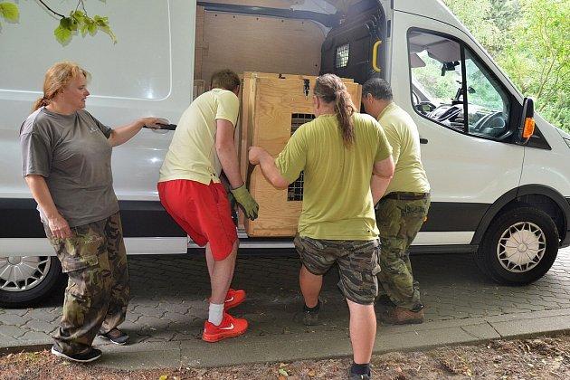 Transport zajistila specializovaná přepravní firma, která do anglické zoo vezla idalší zvířata.