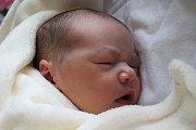 Dominika Pavelková se narodila Natálii Pavelkové z Rumburku 15. října v 7.38 v děčínské porodnici. Vážila 3,76 kg.