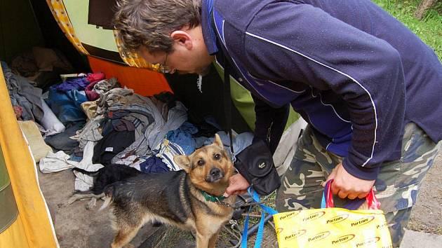 Pracovník děčínského útulku Jaroslav Kácha při odebírání týraného psa. Péči pětatřicetiletého bezdomovce jeden ze psů nepřežil.