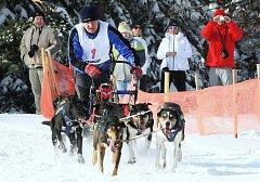 Závod psích spřežení na děčínském Sněžníku
