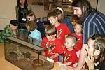 Den dětí v děčínské zoologické zahradě, 2009.