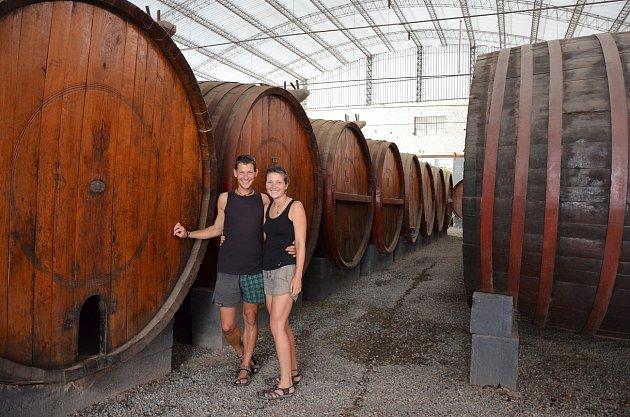 Návštěva vinařství vIce