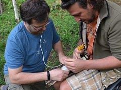 Odborníci pomohli rarohům v zoo umělým oplodněním.