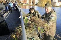 Ze Zámeckého rybníka v Děčíně ochránci přírody vytahovali větve a vlasce.