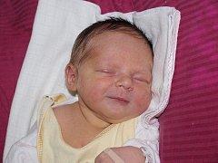 Andree Havlíčkové z Jiříkova se 11.června ve 23.15 v rumburské porodnici narodila dcera Nikola Havlíčková. Měřila 50 cm a vážila 3,56 kg.