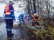 Následky nedělní vichřice na Šluknovsku.