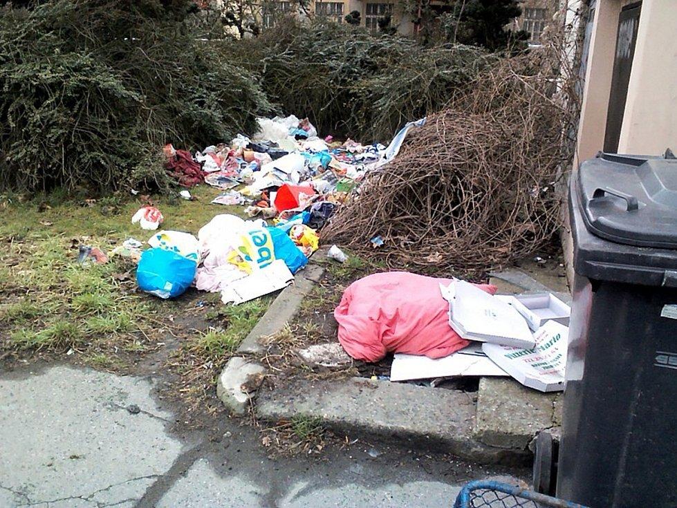 Před úklidem skládky v ulici Pivovarská v Děčíně.