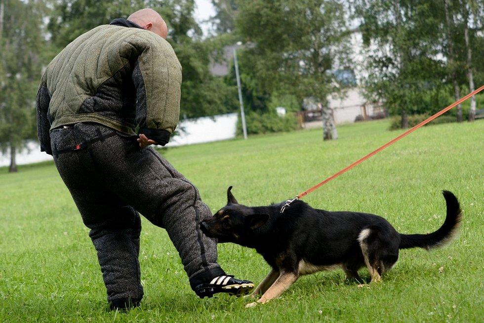 Ukázkovou práci psovodů předvedli policisté v pondělí v Rumburku.