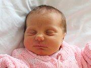 Natálie Benešová se narodila Markétě a Pavlovi Benešovým z Velkého Šenova 14. prosince. Měřila 48 cm a vážila 3,15 kg.