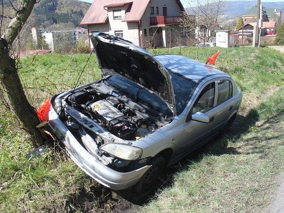Auto skončilo ve stromě.