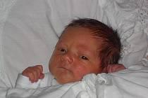 Mamince Petře Baslové z Modré u Děčína se v neděli 16. října 2011 v 7:25 hodin narodil syn Daniel. Měřil 50 cm a vážil 3,32 kg.