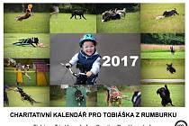 Lidé, kteří chtějí pomoci těžce postiženému Tobiáškovi z Rumburku, si mohou koupit charitativní kalendář za 199 korun.