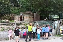 Návštěvníci v děčínské zoo pozorují medvěda Bruna.