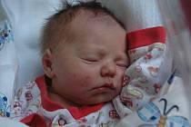 Jitce Košnarové z Děčína se 19. srpna v 8.29 v děčínské porodnici narodila dcera Lucinka Košnarová. Měřila 46 cm a vážila 2,78 kg.