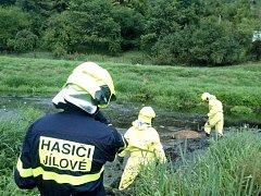 Jelen uvízl v Jílovském potoce, kde uhynul. Tělo vytáhli hasiči.