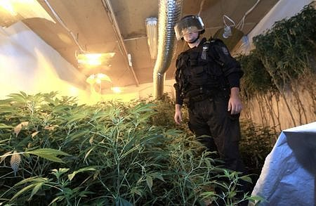 Policisté objevili další pěstírnu marihuany