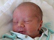 Samuel Pongó se narodil Martině Pongóvé z České Kamenice 6. února v 19.04. Měřil 48 cm a vážil 3,01 kg.