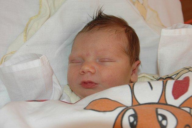 Kateřině Staré z Děčína se 20.června ve 2.44 hodin v ústecké porodnici narodila dcera Adéla Stará. Měřila 48 cm a vážila 3,01 kg.