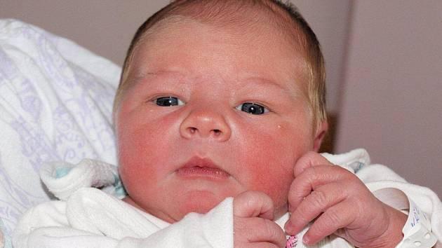 Markétě Křenařové z Rumburka  se 10.října v 11.10 v rumburské porodnici narodil syn Kristián Křenař. Měřil 52 cm a vážil 3,69 kg.