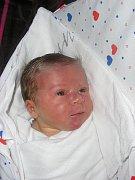 Michaele Flíglové z Jílového se 9. dubna ve 12:03 v děčínské porodnici narodila dcera Lucie. Měřila 51 cm a vážila 3,59 kg.