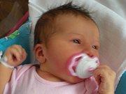 Aneta Likešová se narodila Anetě Vildové a Milanovi Likešovi 6.7. v 1.18. Vážila 3,5 kg a měřila 50 cm.