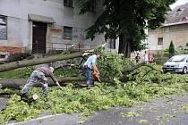 Vichřice zlomila strom