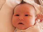 Lence Pavlištové z Jiříkova se 16. října v 11.30 v rumburské porodnici narodila dcera Anetka Braunová. Měřila 50 cm a vážila 4,43 kg.